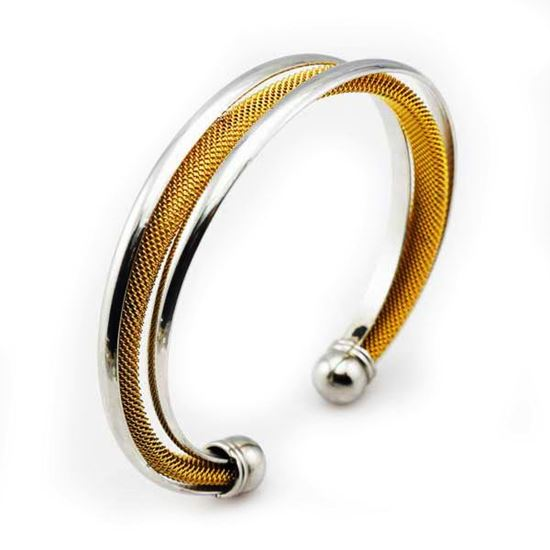 Picture of Women Bangle Stainless Steel Two Gold Tone