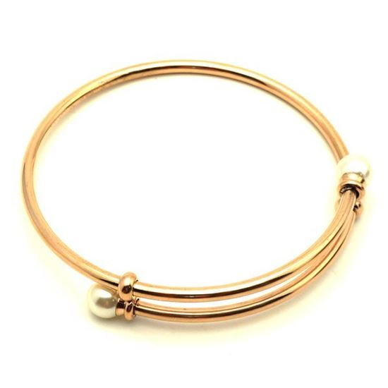 Picture of Rose Bangle Stainless Steel IP Plating