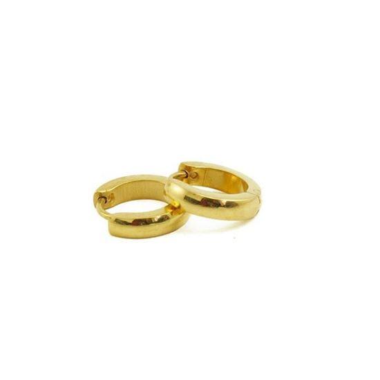 Picture of Huggie Earrings Stainless Steel IP Plating
