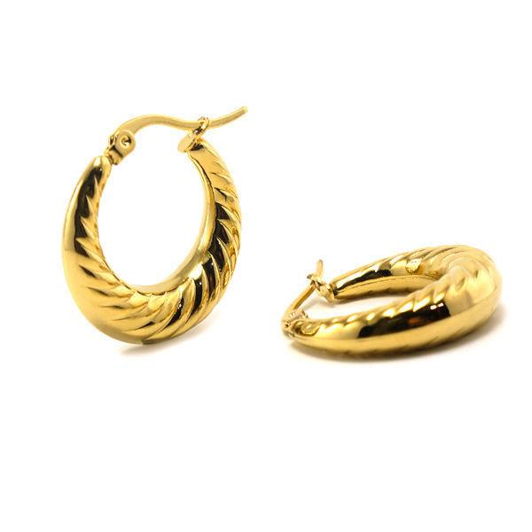 Picture of Hoop  Earrings Gold Plating Stainless Steel