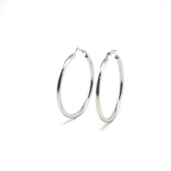 Picture of Hoops Earrings Stainless Steel